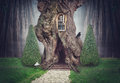 Fairy tree house in fantasy dark forest Royalty Free Stock Photo