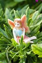 Fairy on vegetation Stock Photo
