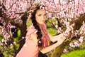 Fairy woman in blossomy garden glamorous young girl peach with flowers braid elegantly sitting on the peach tree Stock Photography