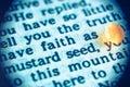 Faith As Mustard Seed