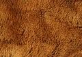 Fake brown fur Royalty Free Stock Photo