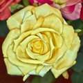 Fake handmade yellow rose flower Royalty Free Stock Photo