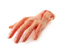 Fake severed hand isolated rubber as a halloween prank toy over the white background Royalty Free Stock Image