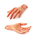 Fake severed hand isolated rubber as a halloween prank toy over the white background set of two different foreshortenings Stock Photo