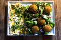 Falafels middle east cuisine a plate of delicious and hummus vegetarian fare Stock Images