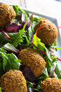 Falafels middle east cuisine a plate of delicious and hummus vegetarian fare Stock Image