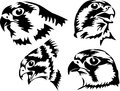Falcon heads of the black illustration Royalty Free Stock Photography
