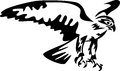 Falcon stylized black and white illustration Stock Images