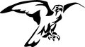Falcon stylized black and white illustration Royalty Free Stock Photo