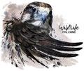 Falcon watercolor painter