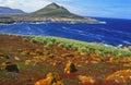 Falkland Islands, Steeple Jason Royalty Free Stock Photo