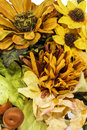 Fall and autumn colored flower arrangment a arrangement showing various colors on a white background Stock Image