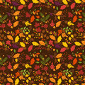 Fall autumn or thanksgiving vector flower pattern seamless and tileable Royalty Free Stock Photos