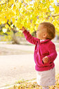 Fall and baby girl Royalty Free Stock Images