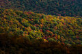 Fall Blankets the Blue Ridge Mountains Royalty Free Stock Photo