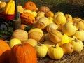 Fall bounty the harvest is plentiful Stock Photo