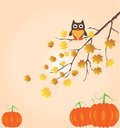 Fall branch illustration of a tree in with leaves owl and pumpkins Stock Photo