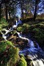 Fall cascades in the lake district england Royalty Free Stock Images