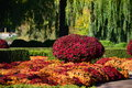 Fall @ Chicago Botanic Garden
