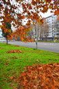 Fall in the city Royalty Free Stock Photo