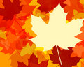 Fall color leaves Royalty Free Stock Image