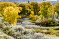 Fall Color and Snow in Colorado Royalty Free Stock Photo