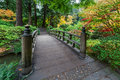 Fall Colors by the Foot Bridge in Japanese Garden Royalty Free Stock Photo