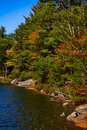 Fall colors muskoka ontario Royalty Free Stock Photography