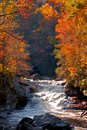 Fall colors of western north carolina in a stream Royalty Free Stock Image