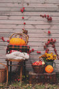 Fall at country house. Seasonal decorations with pumpkins, fresh apples and flowers. Autumn harvest Royalty Free Stock Photo