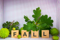 Fall decoration word x x made of wooden letters among chestnuts and acorns placed in d checkered frame Royalty Free Stock Photos
