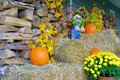 Fall Decorations Stock Photos