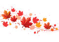 Fall design element Royalty Free Stock Photo