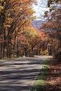 Fall drive Stock Photo