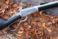 Fall firearm lever action rifle and cartridges on autumn leaves Stock Photo