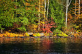 Fall forest and lake shore Royalty Free Stock Photography