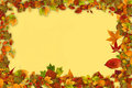Fall frame autumn leaves a yellow background Royalty Free Stock Photos