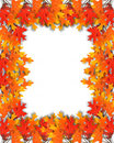 Fall frame leaves thanksgiving Стоковые Фото