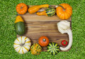 Fall gourds composition of pumpkins and on a wooden board Stock Image