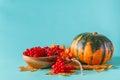 Fall harvest on aquamarine shadowless background Royalty Free Stock Photo