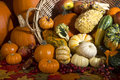 Fall harvest autumn of fruit and vegetablrs Stock Photo