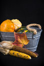 Fall harvest background with pumpkins Royalty Free Stock Photo