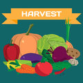 Fall harvest background with space for text. Autumn food festiva Royalty Free Stock Photo