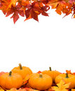 Fall Harvest Frame Royalty Free Stock Photo
