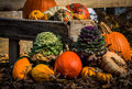 Fall harvest rustic display at roadside Royalty Free Stock Images