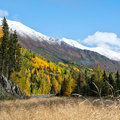 Fall highside along sterling highway reds and golds cover the hillside the on alaska s kenai pennisula Stock Photography