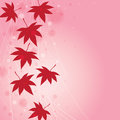 Fall Leaf Background Royalty Free Stock Photos