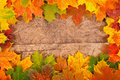 Fall leaf border Royalty Free Stock Photo
