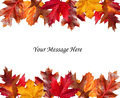 Fall leaves above and below a message Royalty Free Stock Photos