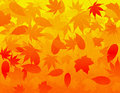 Fall Leaves Background Royalty Free Stock Images
